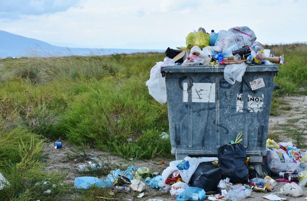 Ekologia i recykling, czyli czy segregacja śmieci ma sens?